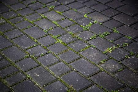 Detail of floor for pedestrians, old