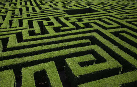Maze detail in a forest, game and fun