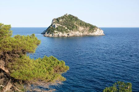 Island bergeggi among the pines