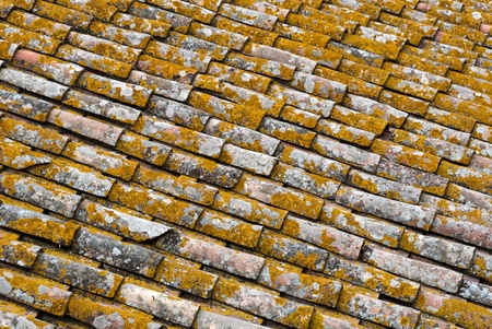 tile encrusted with moss and lichens in Pitigliano in Tuscany