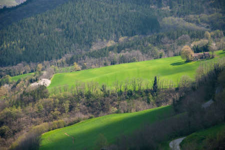 apennines: lawns and trees in spring in Apennines in Italy