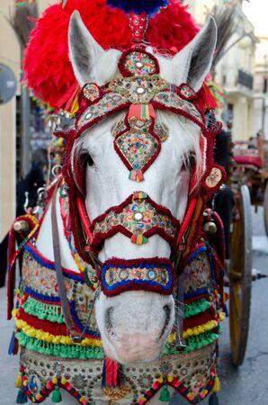 horse throwing a Sicilian cart