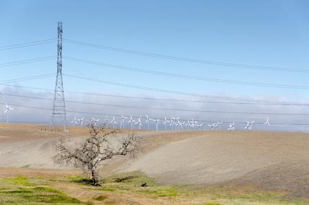 livermore: Golden Hill wind farm in Livermore , California in the United States of America