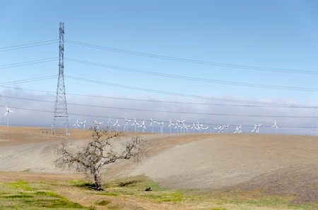 Golden Hill wind farm in Livermore , California in the United States of America