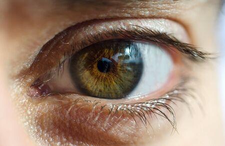 brown eyes: cerca de un ojo verde y marrón