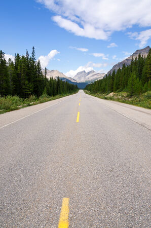 icefield: paved road on the Icefield Parkway in Alberta