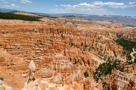 bryce: Bryce Canyon National Park in Utah