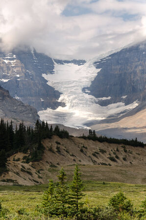 icefield: Glacier on the Icefield Parkway in Canada