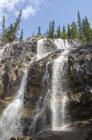 tangle: Tangle Creek Falls on the Icefield Parkway in Canada Stock Photo