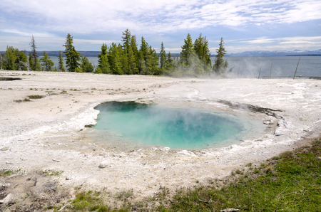 landscape and Geyser in Yellowstone National Park