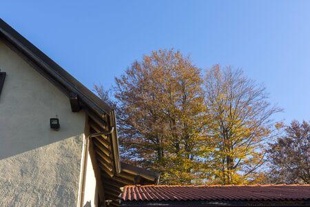 piedmont: colors of autumn in the Apennines between Liguria and Piedmont