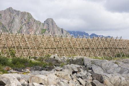 overview of racks for drying stockfish in Svolvaer at Lofoten in Norway Foto de archivo