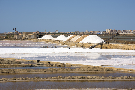 salt collection at the saltworks of Trapani in Sicily in Italy