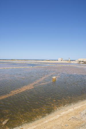 salt at saltworks of Trapani in Sicily in Italy