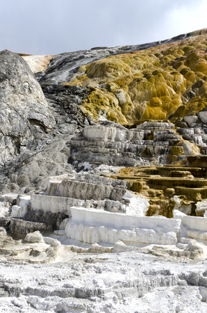 thermal springs at mammoth hot springs in Wyoming, America Stock Photo