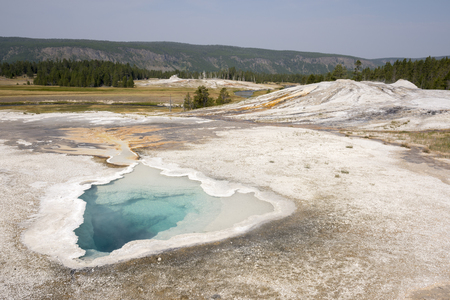 Geyser in old faithful Basin in Yellowstone National Park in Wyoming