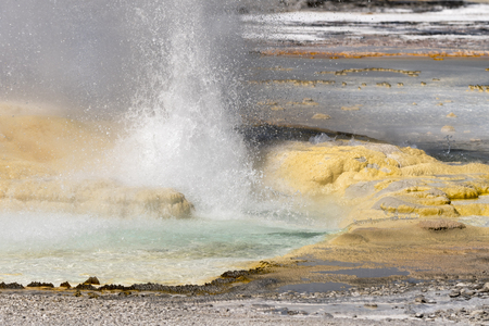 Fountain Paint Pot trail between gayser, boiling mud pools and burnt trees in Yellowstone National Park, Wyoming