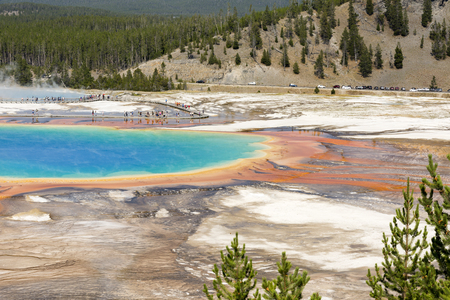 Geyser in grand prismatic spring Basin in Yellowstone National Park