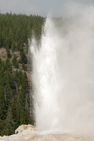 old faithful Geyser in old faithful Basin in Yellowstone National Park in Wyoming