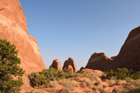 landscape in arches national park in the united states of america