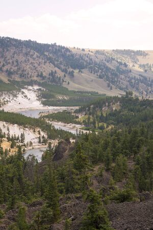 landscape and trees at Tower Fall in Lamar Valley in Yellowstone National Park in Wyoming