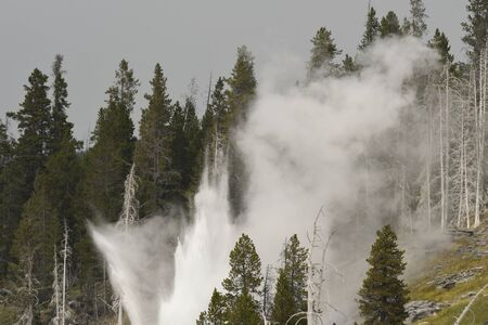 Geyser and hot spring in the old faithful basin in Yellowstone National Park in Wyoming 版權商用圖片 - 127610492