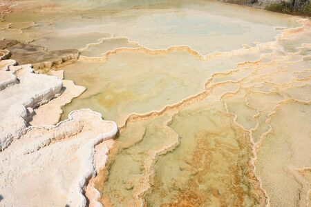 thermal springs and limestone formations at mammoth hot springs in Wyoming in America Stock Photo