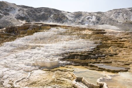 thermal springs and limestone formations at mammoth hot springs in Wyoming in America 版權商用圖片