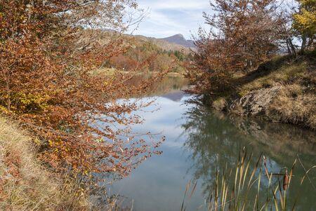 colored leaves in autumn near Bocco Lake in Liguria