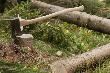 hatchet man: woodcutter