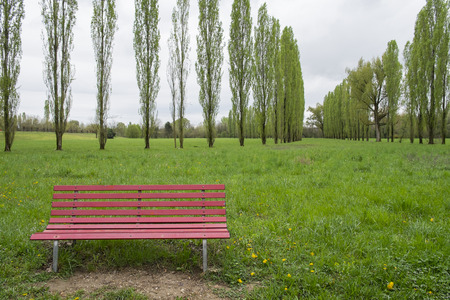 bench alone: red bench in the spring park