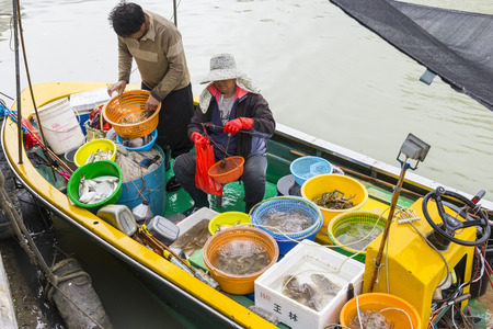wage earner: fishmongers on Their boat in the village of Tai O in Hong Kong