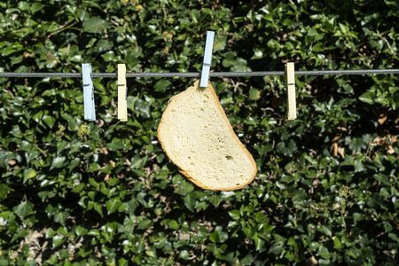 A slice of bread hanging on a wire in the open air
