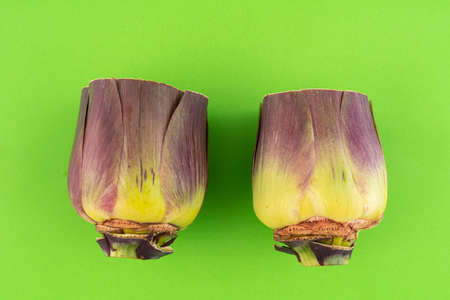 two artichokes in a row on a green surface Standard-Bild