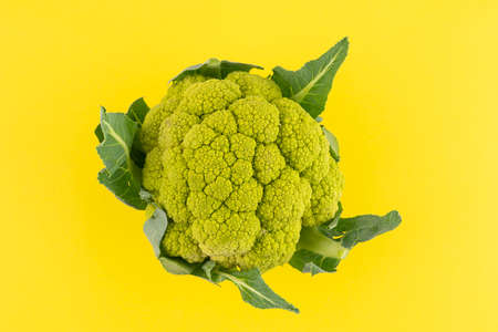 a green cauliflower on a yellow surface Standard-Bild - 160673861