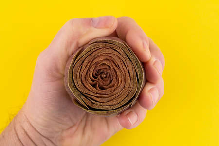 the artichoke in the palm of hand Standard-Bild