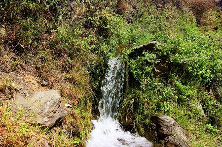 streamlet: Mountain streamlet Stock Photo