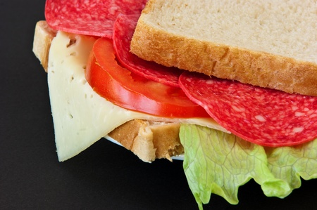 homogeneous: simply the sandwich on a plate was photographed on a homogeneous background