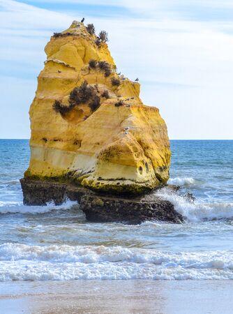 rocha: Yellow rock on sandy Praia da Rocha beach in Portimao and view of turquoise sea water, Portugal.