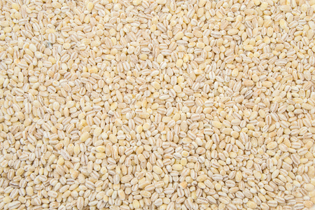 pearl barley: pearl barley close up surface top view background. Stock Photo