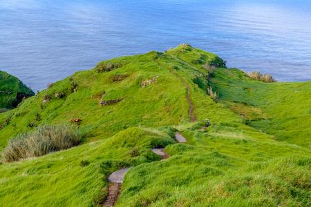 Green bright fairy island of Madeira, Portugal. Stock Photo
