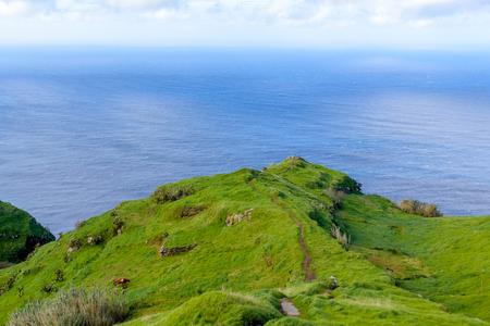 Green bright fairy island of Madeira, Portugal. Imagens