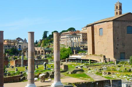 Detail of Roman Forum, Rome Italy (Foro Romano)