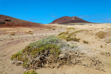 A view of Montana Roja volcano with vegetation in sand desert of El Medano, Tenerife, Spain