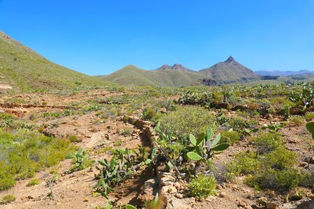 Path that leads to Roque del Conde mount on Macizo de Adeje mountain range in Tenerife, Spain.