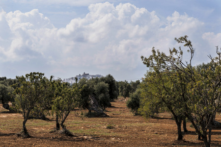 Countryside near the medieval white village of Ostuni Stock Photo