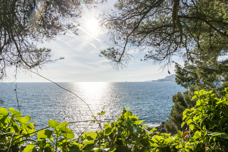 Sunlight reflected on the sea of Cap Martin in a sunny winter day 写真素材