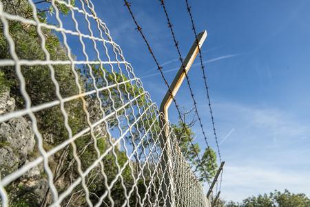 Anti-intrusion metal mesh fence in a Mediterranean wood 写真素材
