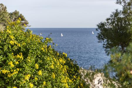 Seacoast of Cap Martin in a sunny winter day