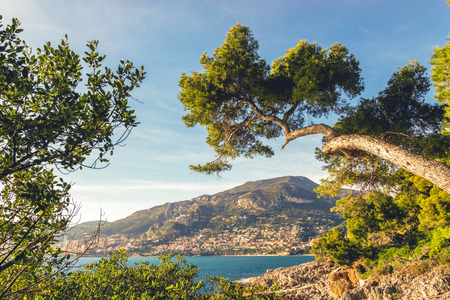 Seacoast of Cap Martin in a sunny winter day